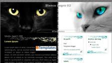 Blanco Negro 02