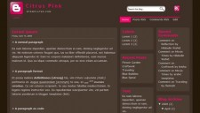 Citrus Pink Blogger Template