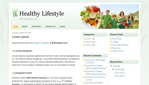Healthy Lifestyle Blogger template - BTemplates