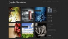Tequilas Flamejantes Blogger Template