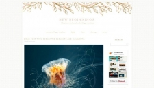 New Beginnings Blogger Template