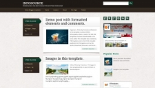 Infosource Blogger Template