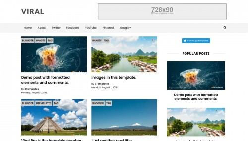 Viral pro blogger template btemplates for Pro photo blog templates