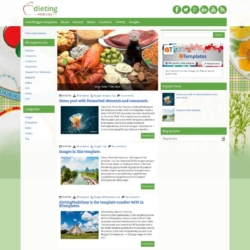 DietingMadeEasy Blogger Template