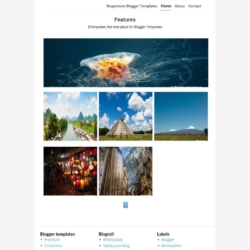 Features Blogger Template