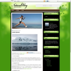 NaturalBlog Blogger Template
