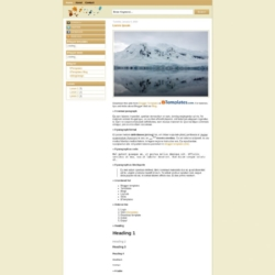 Simple Brown Blogger Template