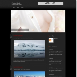 Photos BlogX Blogger Template