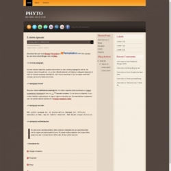 Phyto Blogger Template