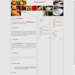 Professional 02 Blogger Template